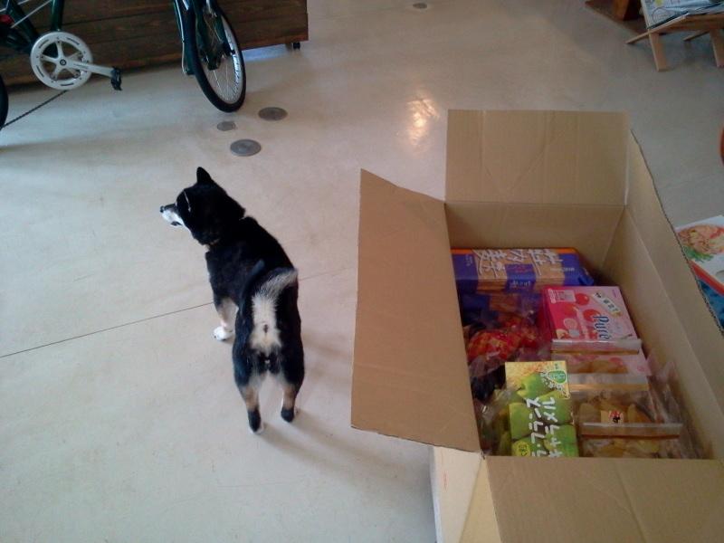 お土産物入荷しました。