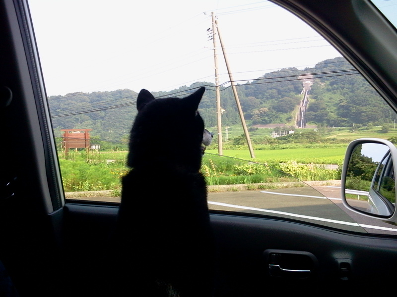 さらば下界よ!鳥海山にいってきます。