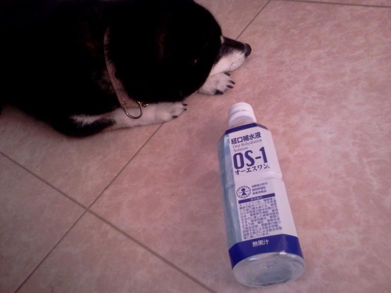 経口補水液 O S -1 オーエスワン