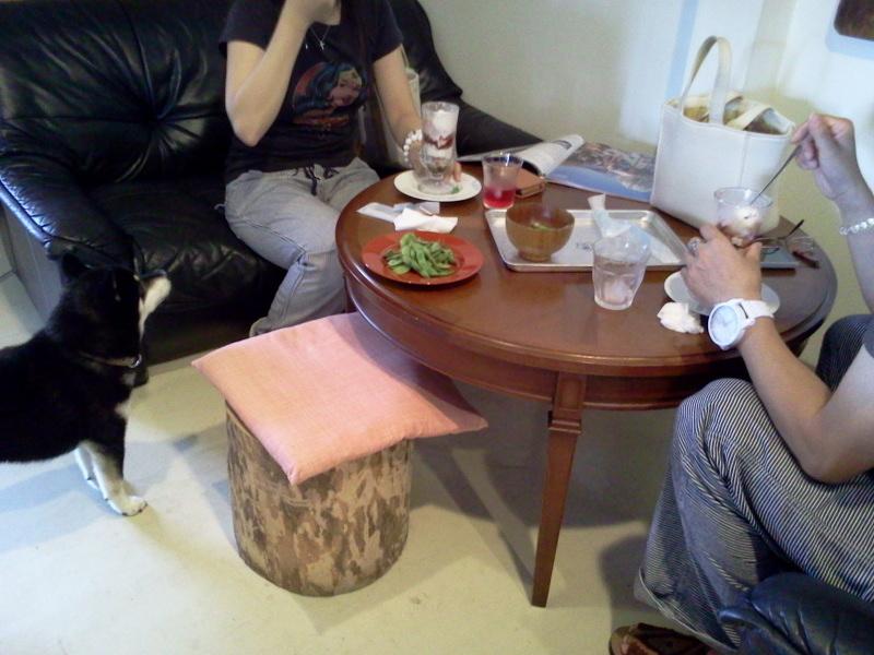 コロナパフェとお客さんと枝豆とシソジュースとコロナ。