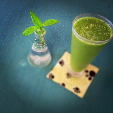 庄内野菜と果物の生ジュース