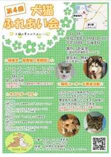 第4回犬・猫ふれあい会とどんしゃん祭りでの譲渡会