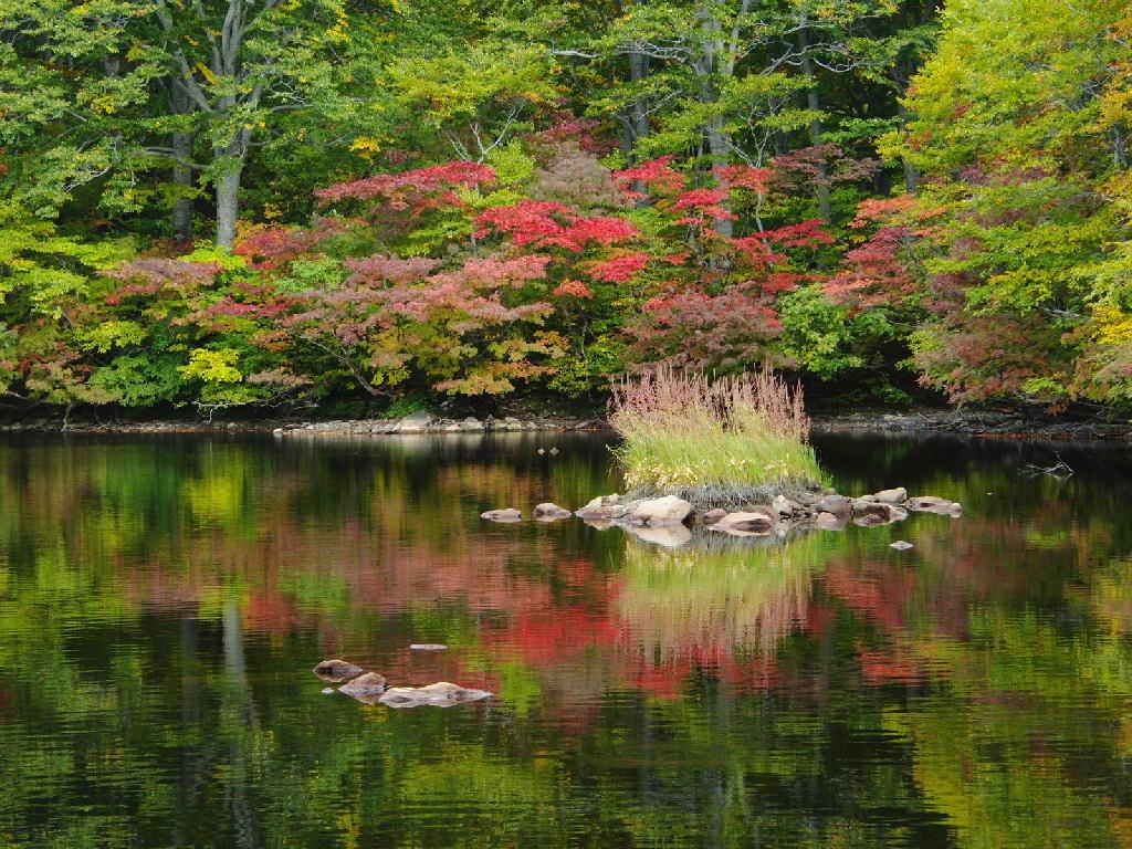 2012年10月20日の鳥海山 鶴間池