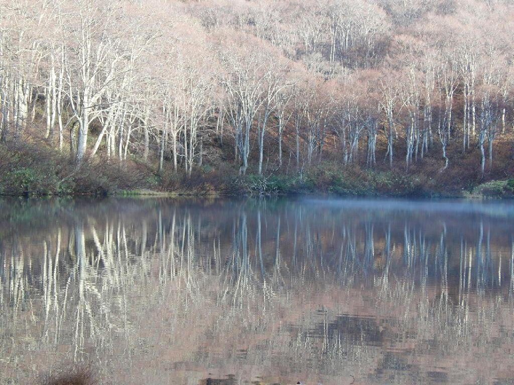 2012年11月11日の鶴間池の風景など①
