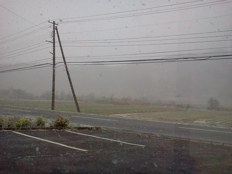 雪がしんしんと降ってきました。