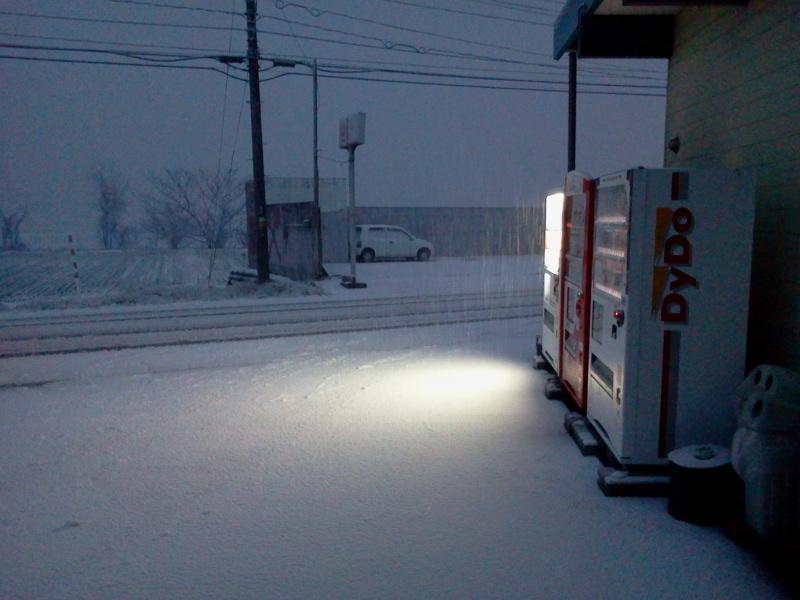 雪がもつもつと降ってます。