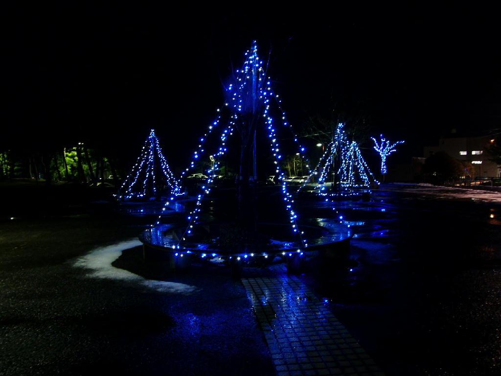 庄内空港緑地公園のツリー