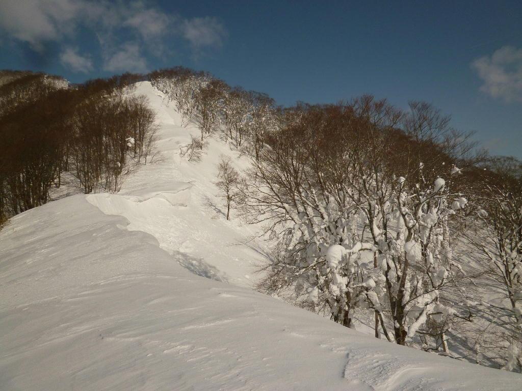 鳥海山 鳳来山〜横堂〜大黒台(一本杉)