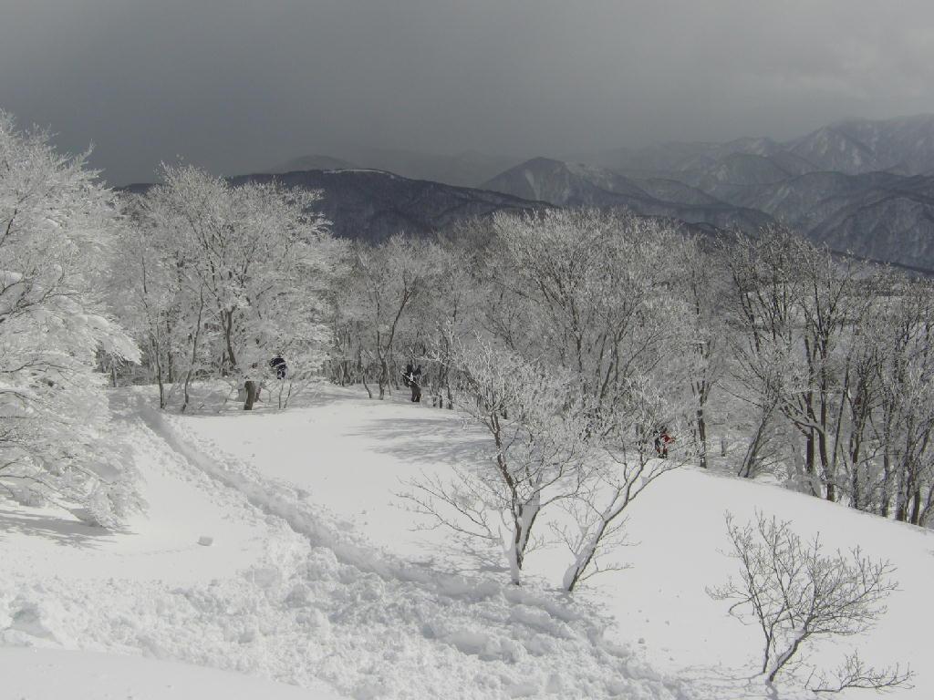 雪山の風景 鳳来山山頂あたりから。