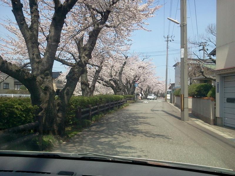 若竹町とか港とか。