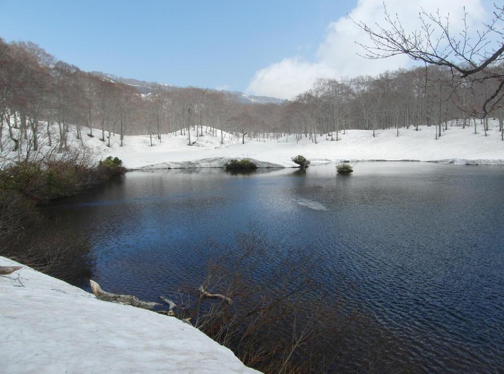 2013/5/12 鳥海山鶴間池