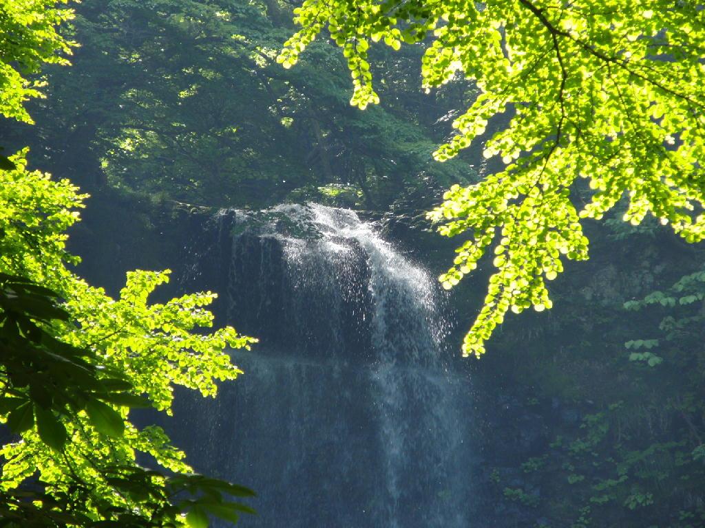 マイナスイオンたっぷりな滝!
