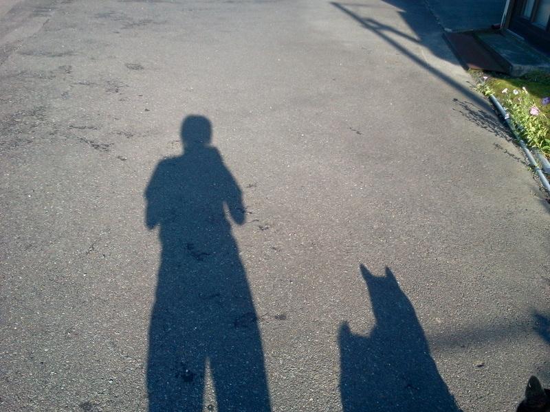 午後の散歩。コロナと。