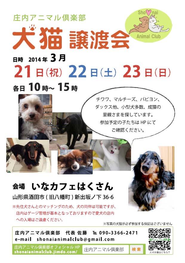 2014年3/21-23に犬猫譲渡会をします!